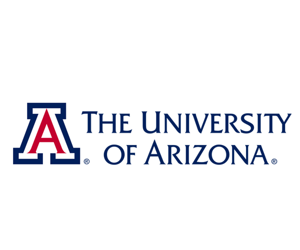 University-of-Arizona-logo-design-USA