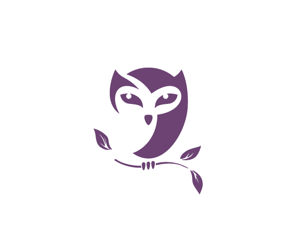 creative-owl-bird-logo-design