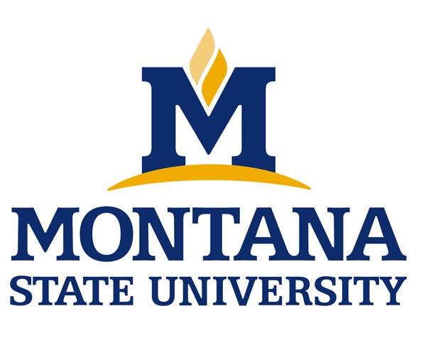 montana-state-university-logo-download-free