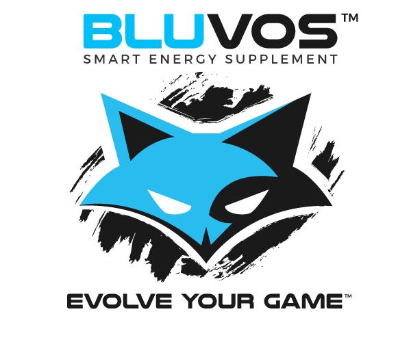 new-stylish-fox-logo-smart-design