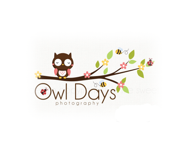 owl-days-photography-logo-design-uk