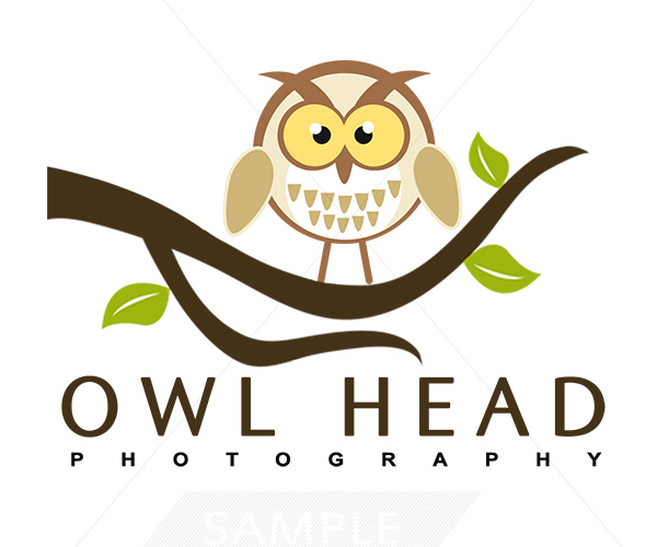 owl-head-photography-logo-design-in-uk
