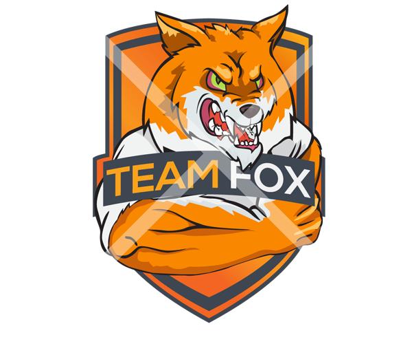 teamfox-logo-design-for-football