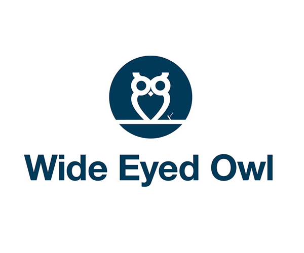 wide-eyed-owl-birds-logo-design