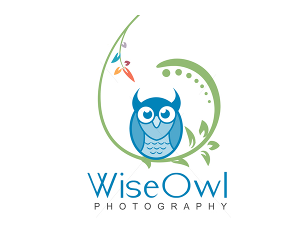 wiseowl-photography-logo-design-in-uk
