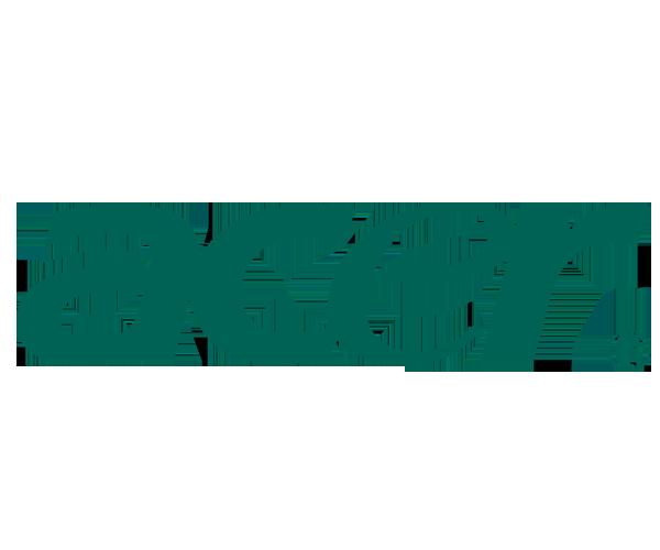 Acer-Logo-png-download