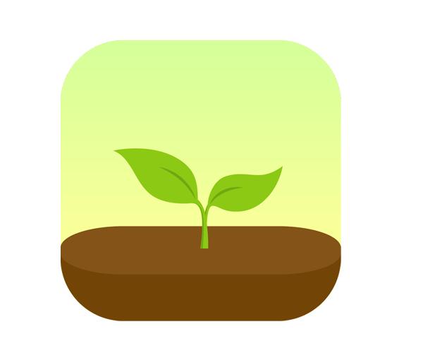 Forest-app-logo-design