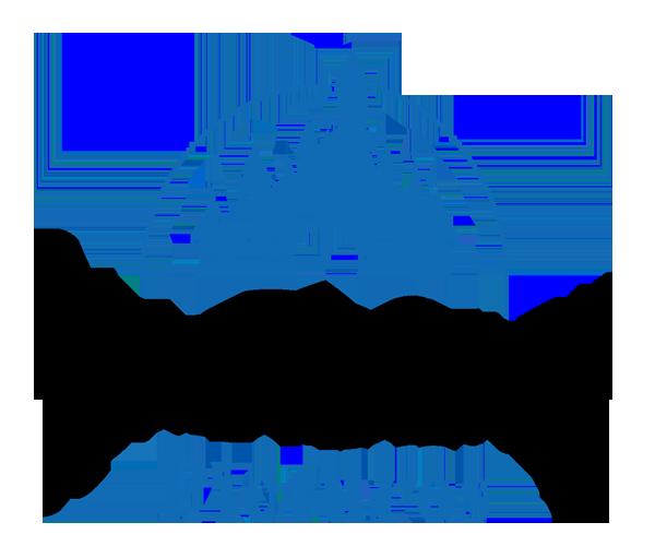 Walt-Disney-png-logo-download