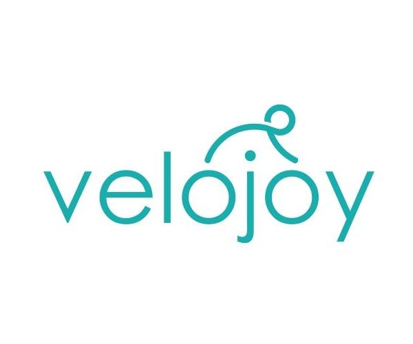 velojoy-logo-designer-for-cycling