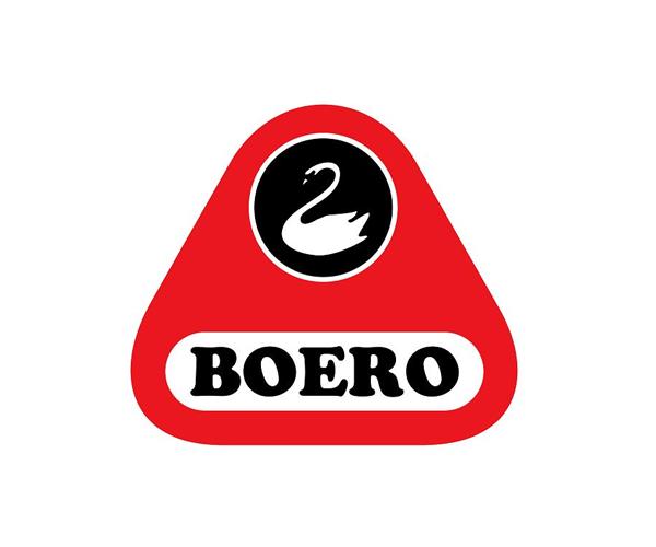 Boero-Group-logo-design
