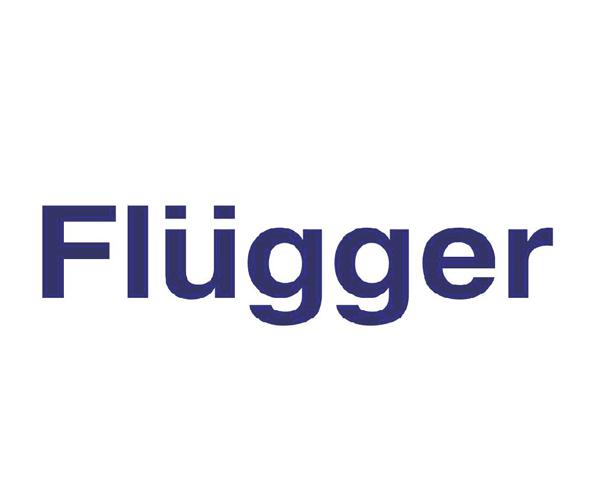 Flugger-Group-logo-design