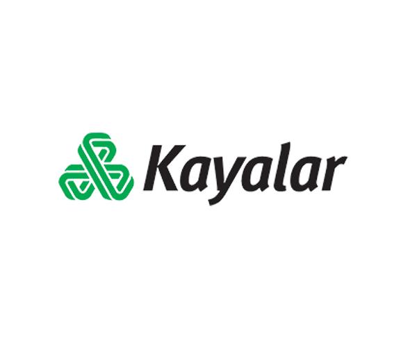 Kayalar-Kimya-paints-logo-design