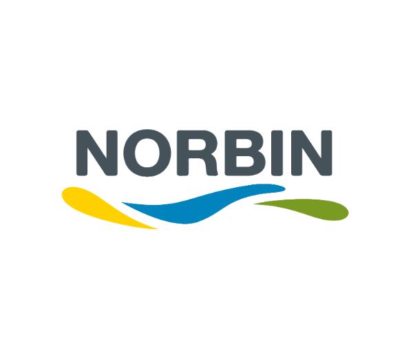 NORBIN-logo-design-paints-co