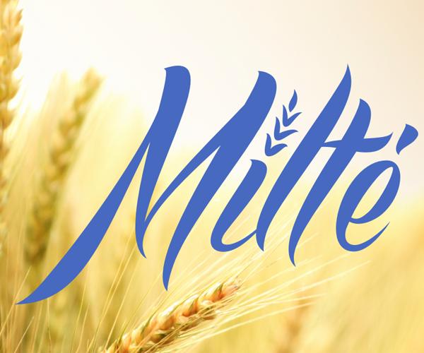 milte-logo-design