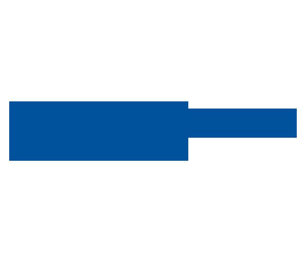 standard-bank-logo-png-download