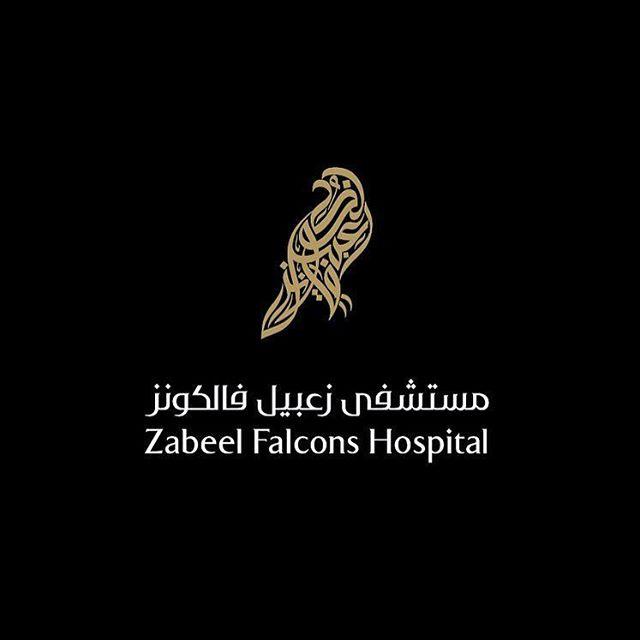 zabeel Falcons Hospital Logo