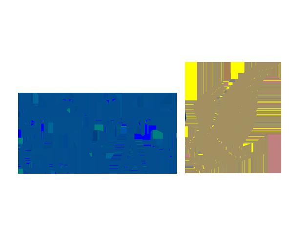 GULF-AIR-logo-design-png-download
