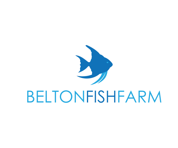 belton-fish-farm-logo-design