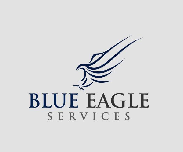 blue-eagle-services-logo-design