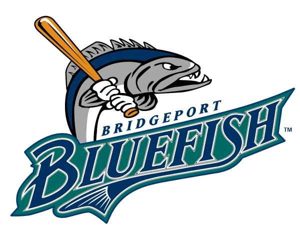 blueeish-bridgeport-logo-design