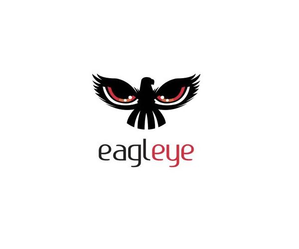 eagle-eye-logo-design