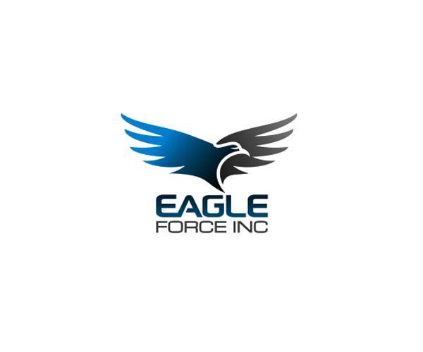 eagle-force-inc-logo-design