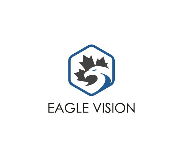 eagle-vision-logo-design
