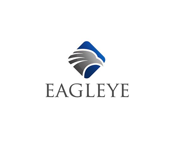 eagleye-logo-design