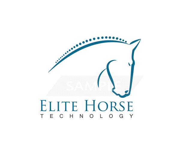 elite-horse-technology-Logo-Designer