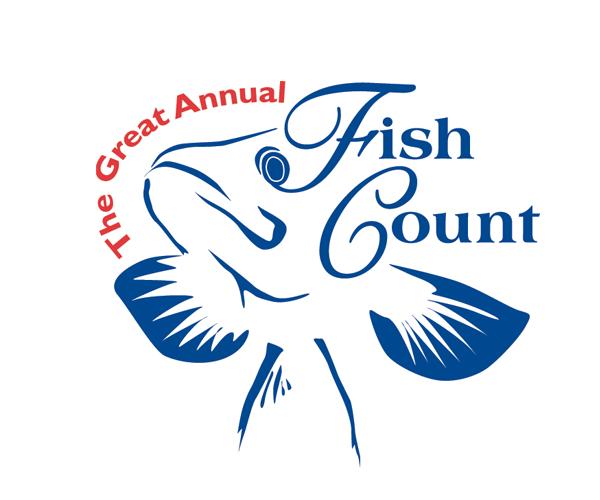 fish-count-logo