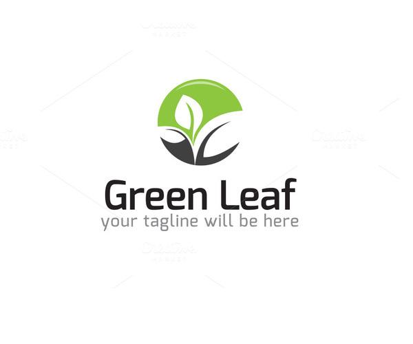 green-leaf-logo-design