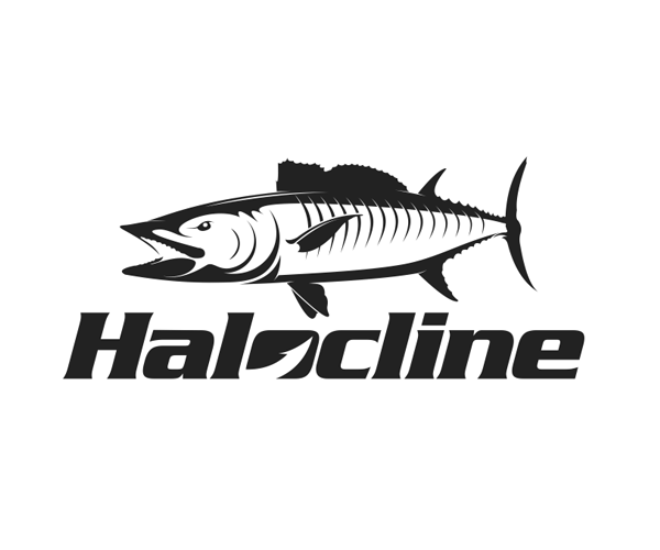 halocline-fish-logo-designer-creative