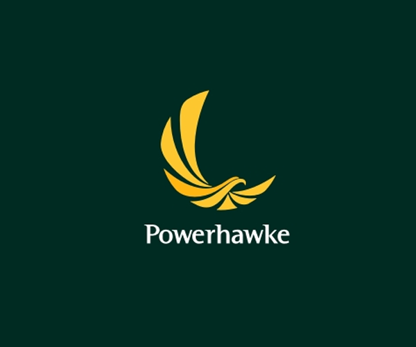 power-hawke-logo-design