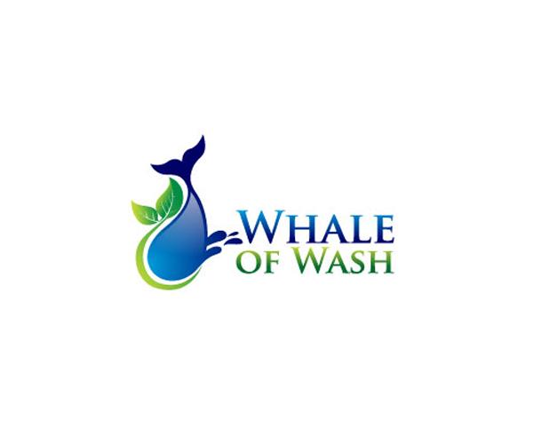 shale-of-wash-logo-design