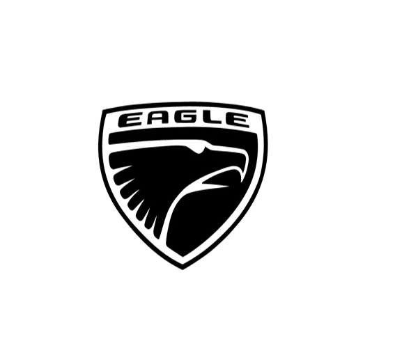 simple-eagle-logo-design-idea