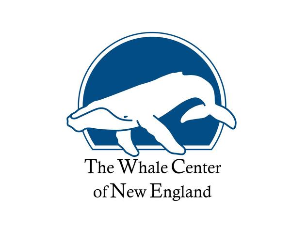 whale-center-new-england-logo
