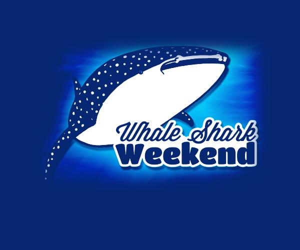 whale-shark-weekend-logo-design